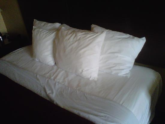 Comfort Inn Waynesboro: Pillow Show #203, Comfort Inn