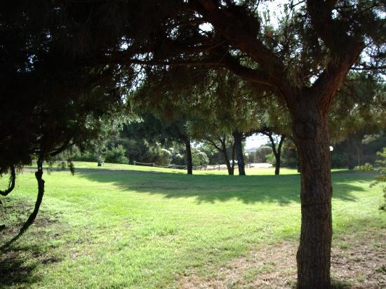 Pullman Timi Ama Sardegna: verde tra albergo e spiaggia