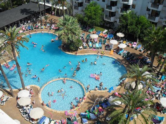 Protur Palmeras Playa Hotel : pool