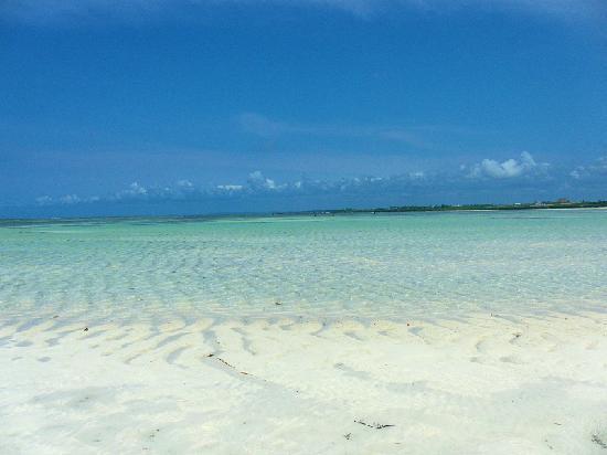 Ora Resort Watamu Bay: Mare Watamu Bay