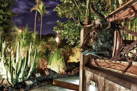Jardines de Nivaria - Adrian Hoteles : Jardines de Nivaria pool area at night