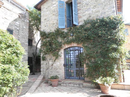 Prato di Sotto: View from Olive mill front porch