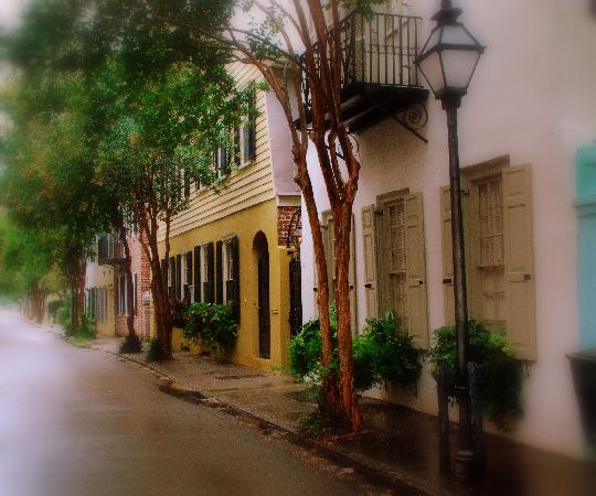 Charleston, Carolina del Sur: After August' rain