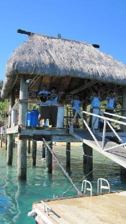 Malolo Island Resort: Jetty