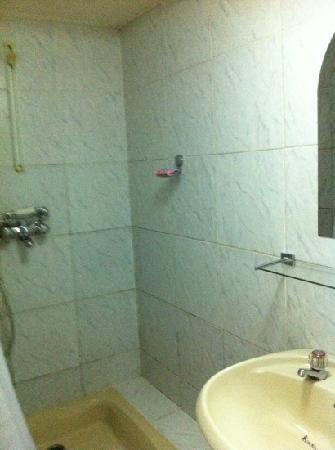 Frankie's Hotel and Restaurant: bathroom