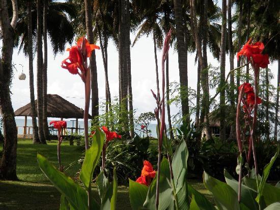Crystal Paradise Resort & Winery: Surrounded by a tropical paradise