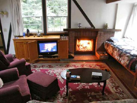 Blackberry Inn: Living area with TV and working fireplace!