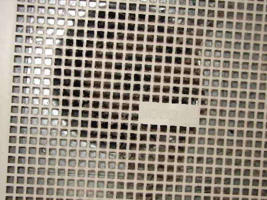 Hotel MTL EXPRESS Montreal Airport: Grille salle de bain (image 2)