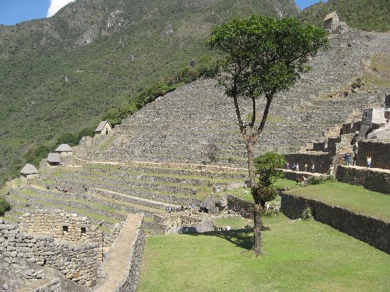Machu Picchu, Perú: Somos grandes!!!
