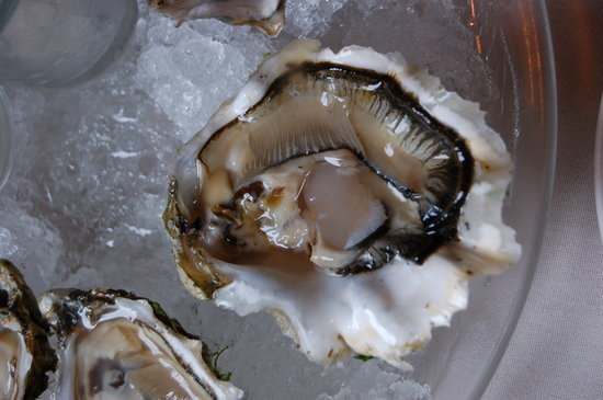 The Oyster Creek Inn: This is one delectable oyster!!