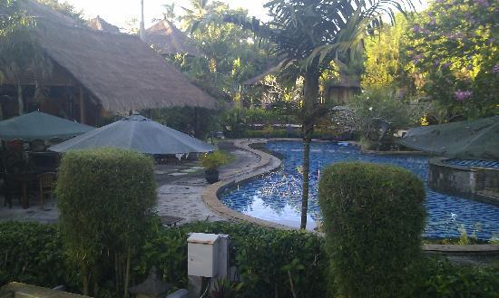 Negara, Indonesia: View of the pool from rooms