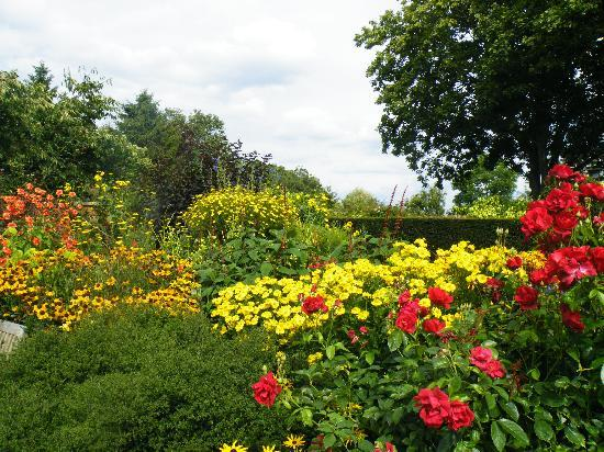 Wollerton Old Hall Garden: One of the many flower beds