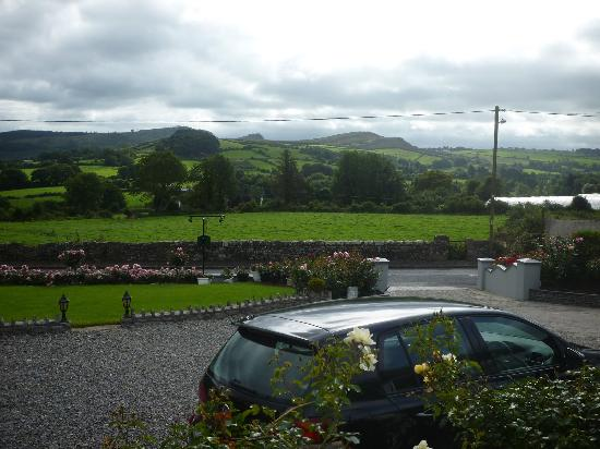 Woodview Bed and Breakfast: View from the bedroom window