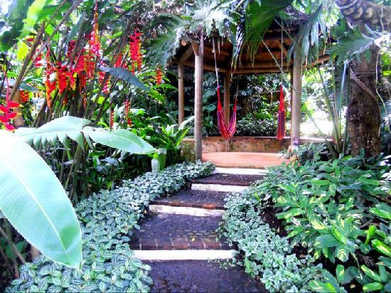 Quinta de las Flores: Hammocks