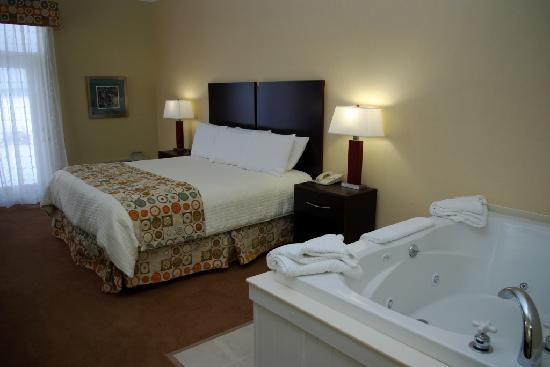 Cherry Tree Inn & Suites: Lake Charlevoix Studio - King Pillow-top Bed, Jacuzzi, Expanded Kitchenette Studio with Bay View