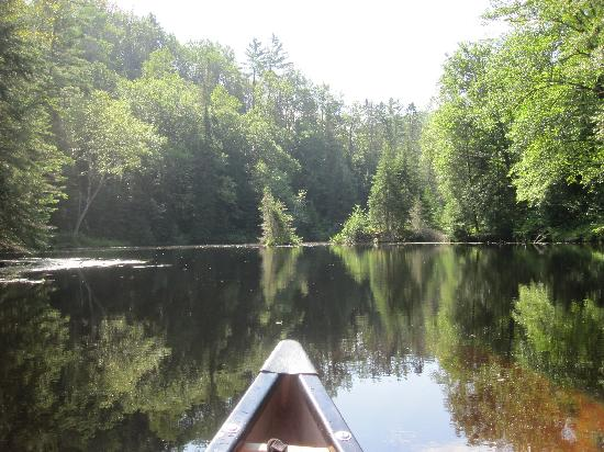 LaVielle Ecole - The Old School House: Canoing up a smaller tributary on the St-Maurice