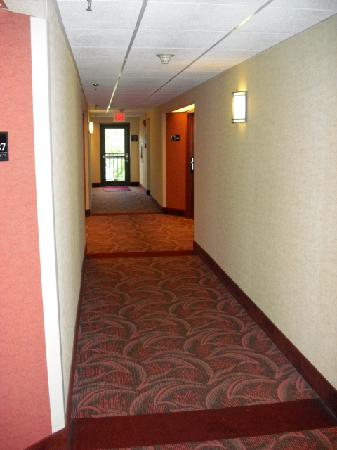 Hampton Inn Lancaster: 1st Floor Hallway