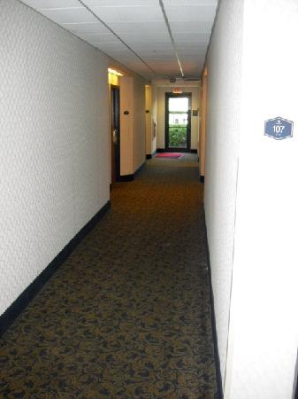 Hampton Inn Plymouth Meeting: 1st floor hallway