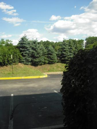 Hampton Inn Plymouth Meeting: View from room; roadway directly behind trees