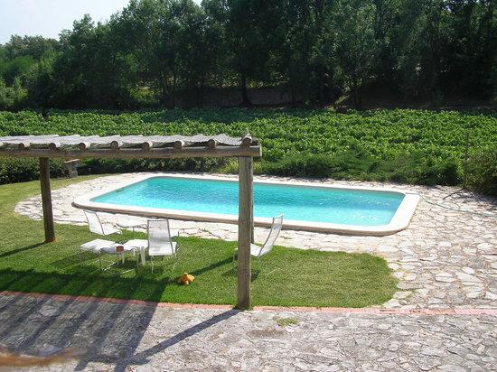 Quinta da Anunciada Velha : swimming pool