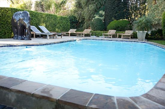 Avondrood Guest House: Swimming pool & Jacuzzi