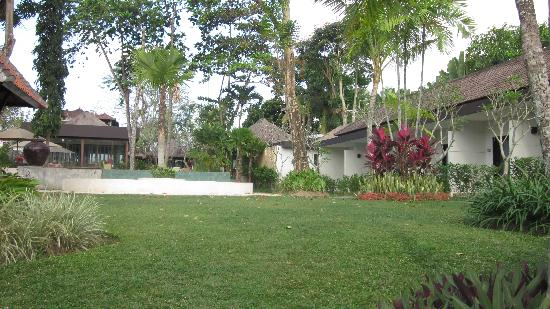 Y Resort Ubud: jardin