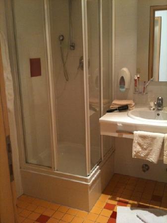Hotel Handl : bath