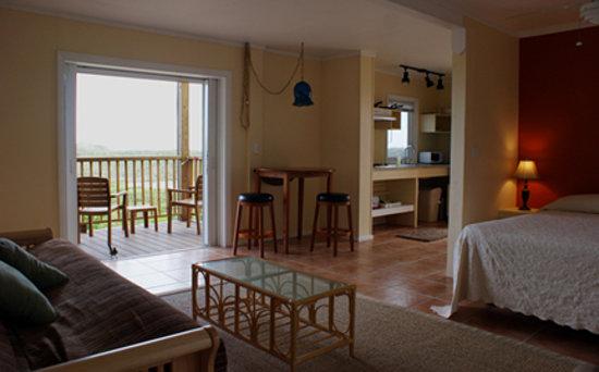 Concordia Eco-Resort: One of Eight Eco-Studios