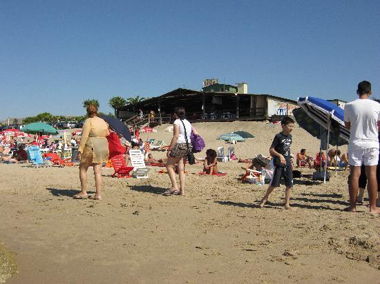 Hotel degli Angeli : spiaggia pulita