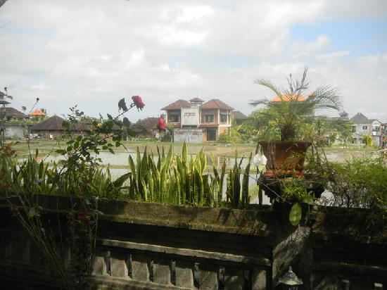 Permana Cottages: Vista - View