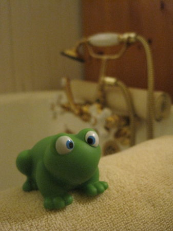 Edwards House: The Auntie Stone room's clawfoot tub had a cute, quirky touch: a toy frog!