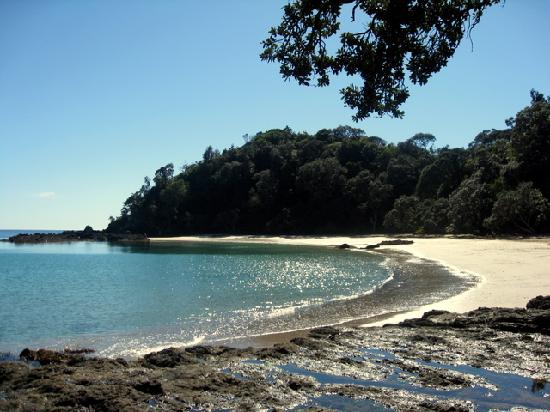 Lupton Lodge: Whale Bay, Tutukaka Coast