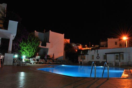 Arya Aparthotel : pool area