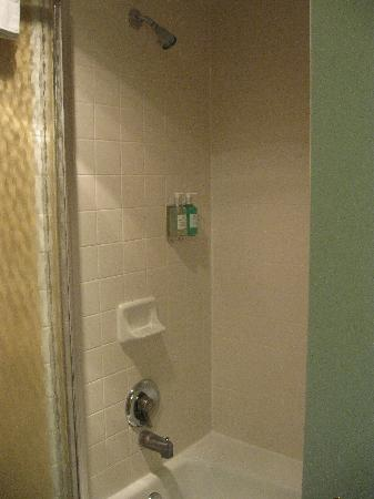 Coast Gateway Hotel: Shower