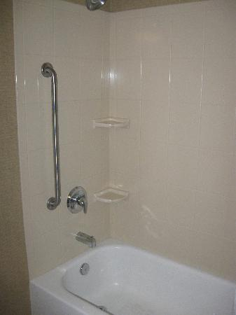 Holiday Inn Express Hotel & Suites Medford-Central Point: Tub