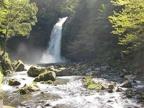 Izu, Japon : 常連の滝