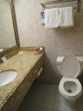 Days Inn Los Angeles LAX Airport/Venice Beach/Marina Del Ray: Good size bathroom