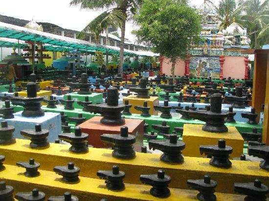 Kotilingeshwara Bild