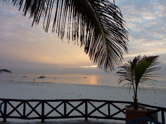 Diani Blue: Sunrise from the terrace