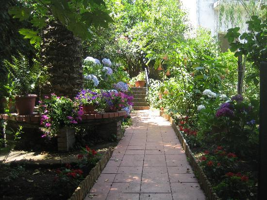 Villa Rosa  Etna Bed & Breakfast: Town center - garden