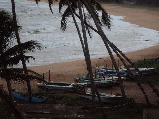 Induruwa Beach Resort: Balcony view