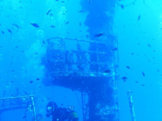 Corsair Diving Malta: Wrackheaven