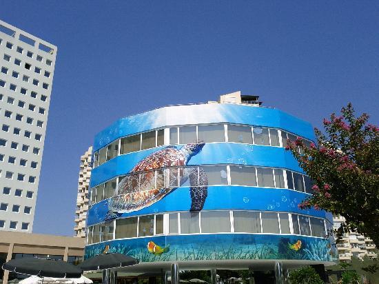 The Marmara Antalya: Il complesso dell'hotel visto dal giardino