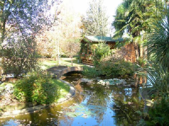 B&B Sole&Luna : giardino d'autunno