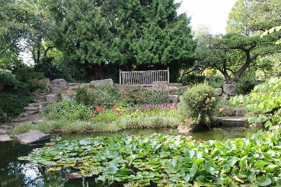 Cambridge University Botanic Garden: Botanic Gardens