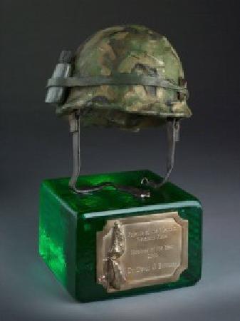 New York City Vietnam Veterans Memorial Plaza: Phelps Award - New York City Vietnam Veterans Memorial