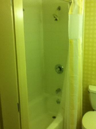 Hilton Garden Inn Hershey: shower