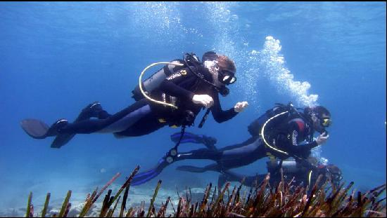 Ciudad de Naxos, Grecia: Me and another diver on our discover dive