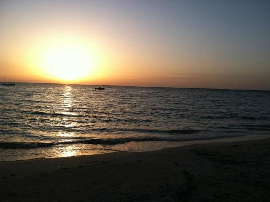 Negril Tree House Resort: The beach at sunset