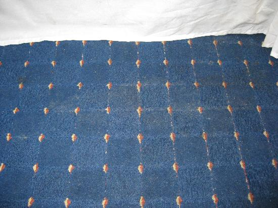 Chester Bridge Hotel: Dodgy carpet stain next to the bed